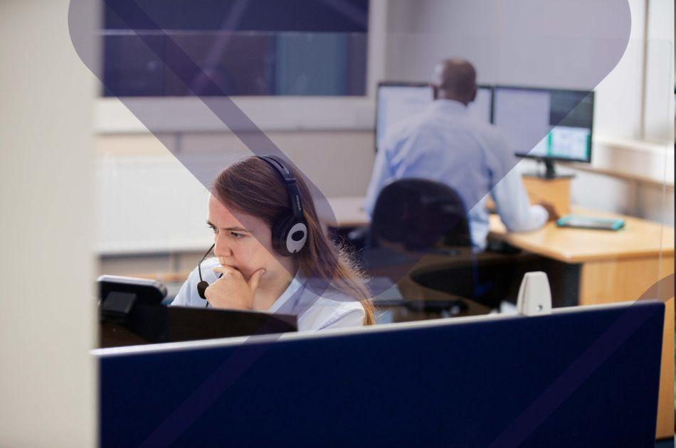 IT workers in office